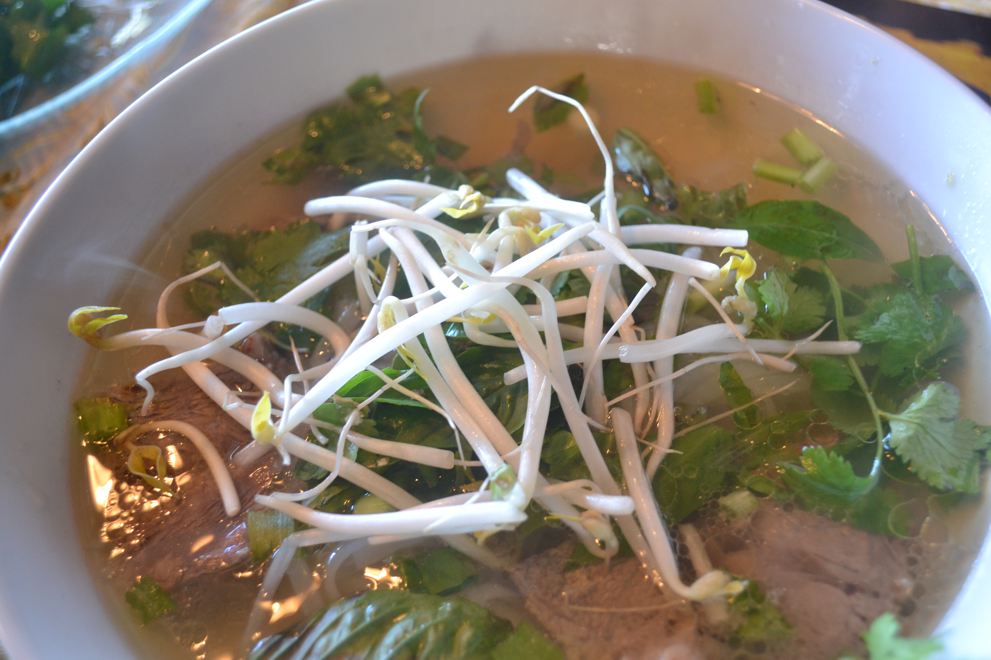 ... Vietnamese Rice Noodle Soup with Beef – The Primlani Kitchen