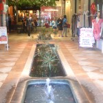 Koi Pond at Entrance to The Shops